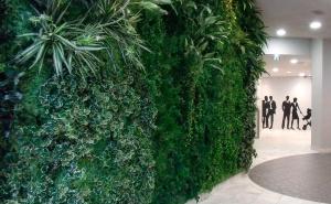 室内、室外绿化