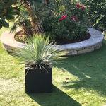 现代风格凳子 / 橡胶 / 带有花坛 / 户外