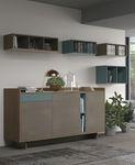 现代风格餐边柜 / 木质 / 搁板 / 模块