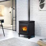 颗粒采暖炉 / 现代风格 / 铸铁