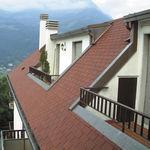 聚合物屋面板 / Class E级 / 用于屋顶