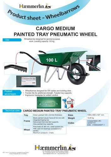 CARGO MEDIUM PAINTED TRAY PNEUMATIC WHEEL